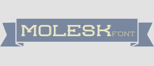 Molesk font